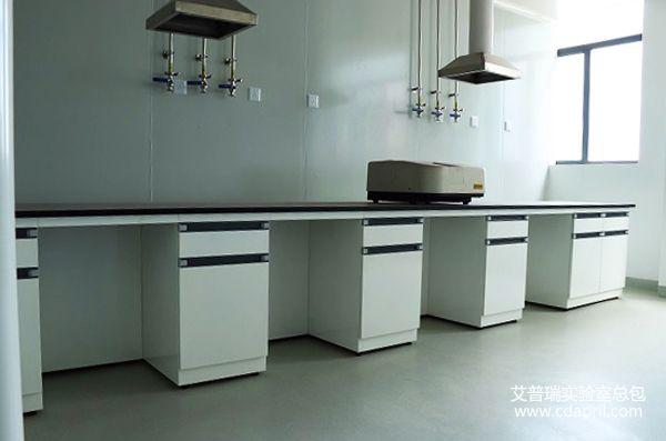 资阳市食品药品监督管理局实验室建设7