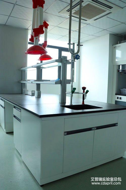 资阳市食品药品监督管理局实验室建设8