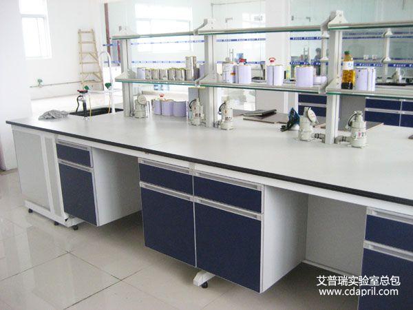 嘉宝莉化工集团实验室建设2