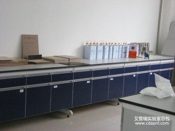 嘉宝莉化工集团实验室建设3