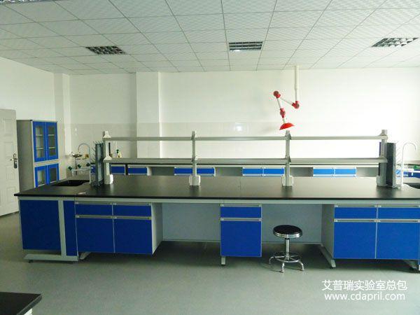 艾普瑞实验室为华润五丰实验室装修施工4