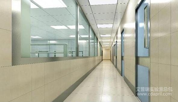 p2实验室设计标准和要求