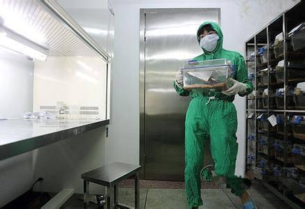P2实验室建设标准,p2级实验室装修设计注意事项