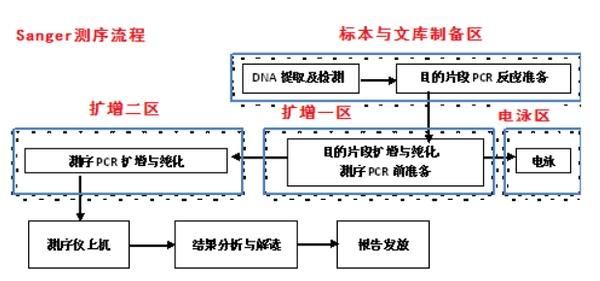 遗传病诊断+肿瘤诊断与治疗测序流程
