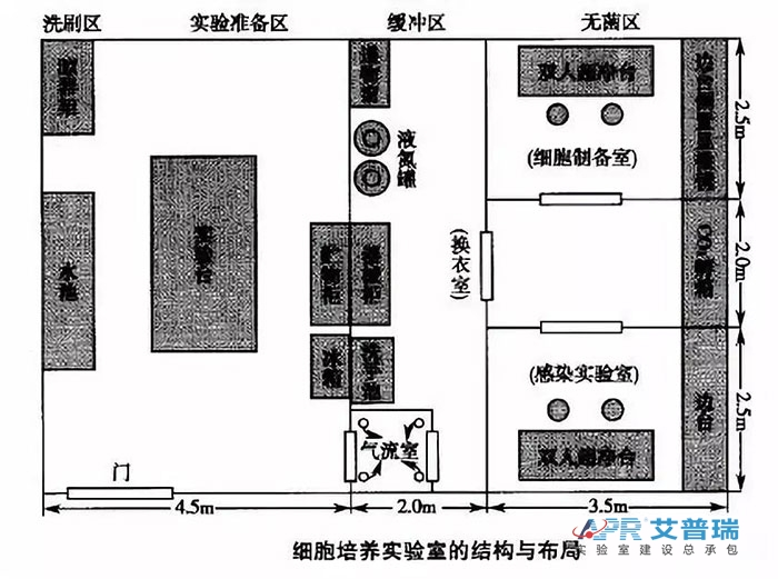 细胞培养实验室的机构与布局